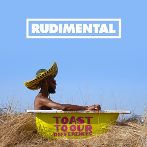 vinyl 2LP RUDIMENTAL Toast Our Differences