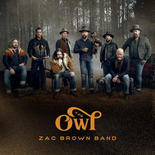 vinyl LP Zac Brown Band ‎– The Owl