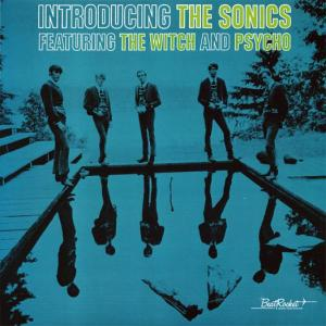 vinyl LP SONICS Introducing the Sonics