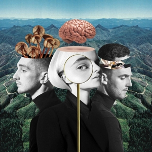 vinyl 2LP CLEAN BANDIT What Is Love?