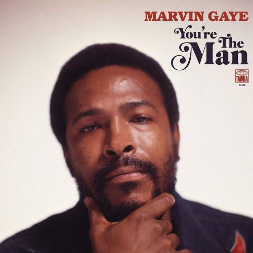 vinyl 2LP MARVIN GAYE You're The Man