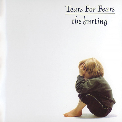 vinyl LP TEARS FOR FEARS The Hurting