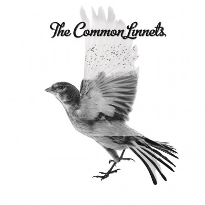 vinyl LP THE COMMON LINNETS THE COMMON LINNETS