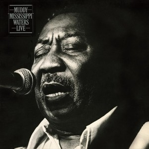 vinyl LP MUDDY WATERS MUDDY 'MISSISSIPPI' WATERS LIVE