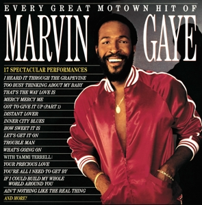 vinyl LP MARVIN GAYE EVERY GREAT MOTOWN HIT OF MARVIN GAYE: 15 SPECTACULAR PERFOMANCES