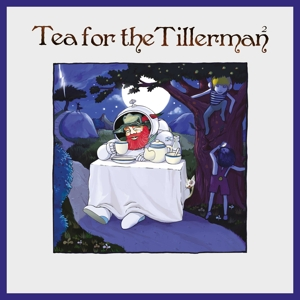 vinyl LP YUSUF/CAT STEVENS Tea For the Tillerman 2