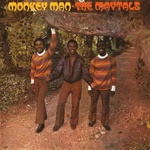 vinyl LP THE MAYTALS MONKEY MAN