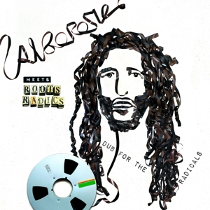 vinyl LP Alborosie Meets Roots Radics - Dub For the Radicals