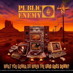 vinyl LP Public Enemy What You Gonna Do When the Grid Goes Down?