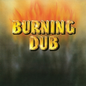 vinyl  LP REVOLUTIONARIES Burning Dub