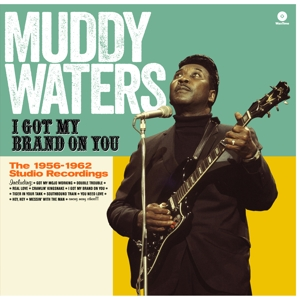 vinyl LP MUDDY WATERS I Got My Brand On You