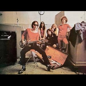 vinyl LP FLAMIN GROOVIES Teenage Head