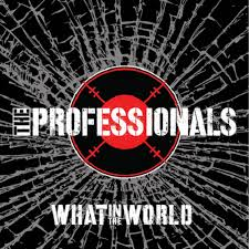 vinyl LP PROFESSIONALS What In the World