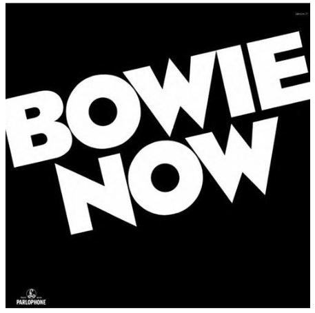 vinyl LP DAVID BOWIE  RSD - NOW
