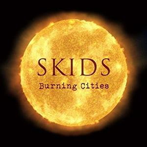 vinyl LP SKIDS Burning Cities